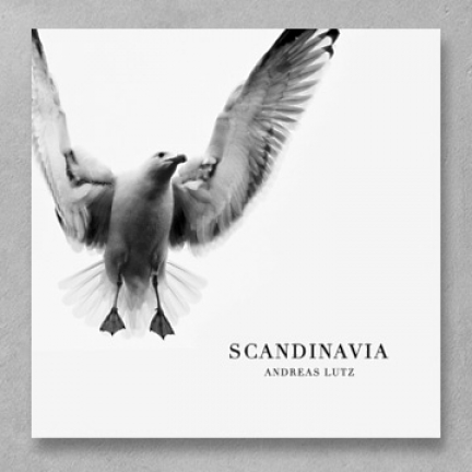 Andreas Lutz 'Scandinavia' Remix